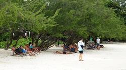 Mushroom Travel เสริมทัพ ททท. หนุนเกาะเสม็ด…เที่ยวได้ ปลอดภัย