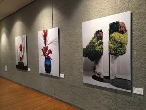 Ken Domon Museum of Photography (4)