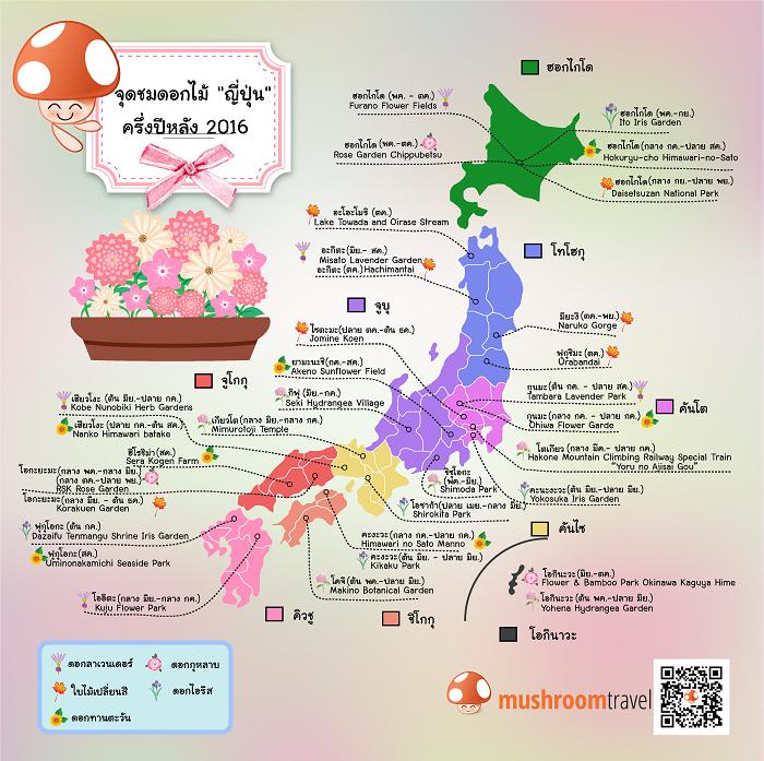 Infographic_OK_re