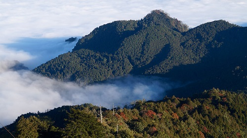 Alishan Forest Recreation Area (1)
