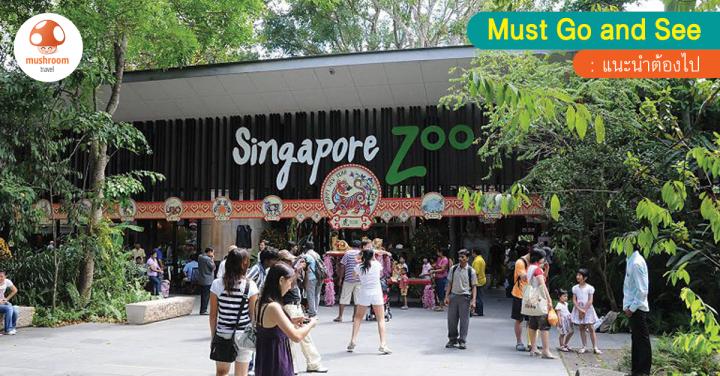 พาลูกเที่ยวสิงคโปร์ กับ Top 5 ที่เที่ยวสำหรับเด็กและครอบครัว