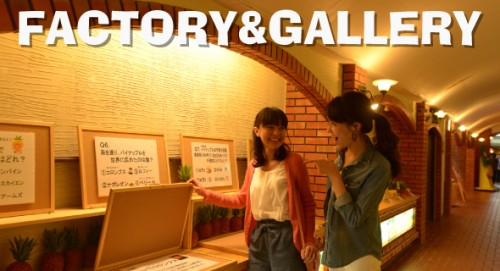 gall1