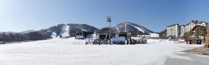 สกี เกาหลี