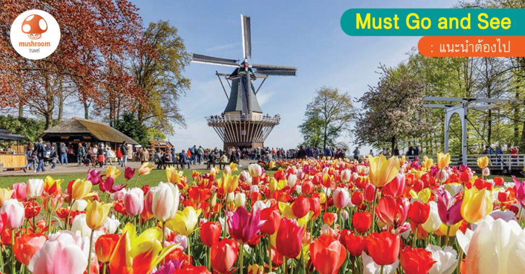เตรียมตัวเที่ยวเนเธอร์แลนด์ เทศกาลดอกทิวลิป สวนเคอเคนฮอฟ 2018 หนึ่งปีมีครั้ง!