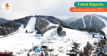 April Snow 2017 เล่นหิมะสุขใจที่เกาหลี สงกราต์นี้ ห้ามพลาด!