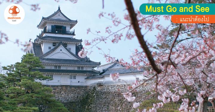 เที่ยว เมืองโคจิ ญี่ปุ่น 1 ใน 4 เพชรเม็ดงามจากเกาะชิโกกุ