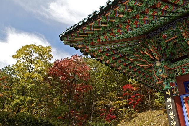 ใบไม้เปลี่ยนสี เกาหลี