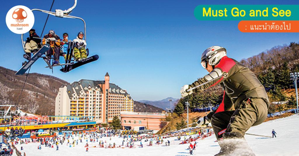 เที่ยวหิมะ พักสกีรีสอร์ท เกาหลี สนุกยกครอบครัวที่ใครๆ ก็เที่ยวได้!