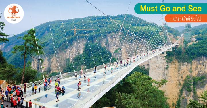พิสูจน์ความเสียว สะพานแก้ว จางเจียเจี้ย ที่เที่ยวใหม่ไม่ไปคือพลาด!