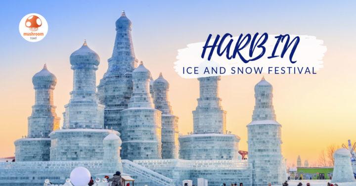 เทศกาลน้ำแข็ง ฮาร์บิน 2020 ตะลุยงานฤดูหนาวระดับโลก !!