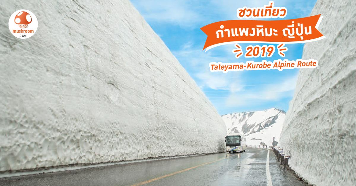 ทัวร์กำแพงหิมะ ญี่ปุ่น
