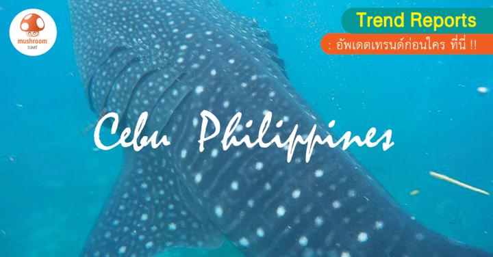 เกาะเซบู ฟิลิปปินส์ ไปสัมผัสให้รู้ แล้วคุณจะหลงรัก!!