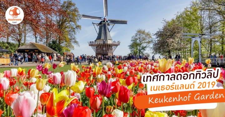 เตรียมตัวเที่ยว เทศกาลดอกทิวลิป เนเธอร์แลนด์ 2019 ณ สวนเคอเคนฮอฟ หนึ่งปีมีครั้ง!