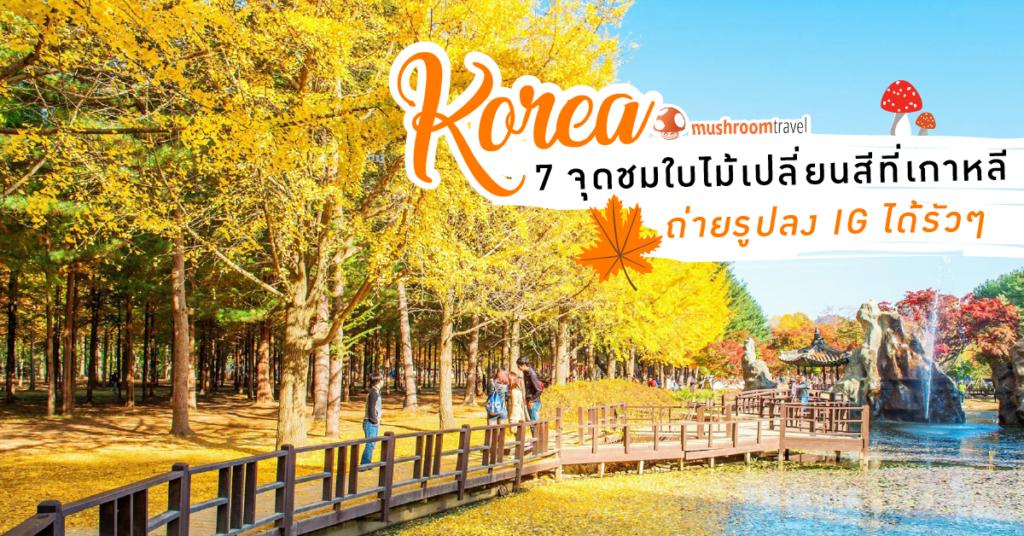 7 ที่เที่ยว เกาหลี ใบไม้เปลี่ยนสี 2018 ยอดฮิต ถ่ายรูปลง IG ได้รัวๆ