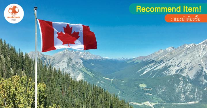 5 ของฝากแคนาดา ยอดฮิต ที่คัดแล้วว่าน่าซื้อสุดๆ