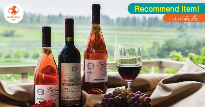 คนรักไวน์ห้ามพลาด! 5 ไวน์ฝรั่งเศส รสชาติดี การันตีจากทั่วโลก