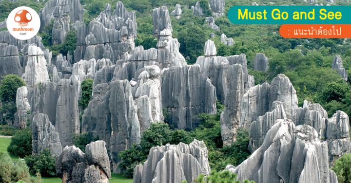 ตะลุยเมืองจีน กับ ที่เที่ยว คุนหมิง เสน่ห์ธรรมชาติอันน่าหลงใหล