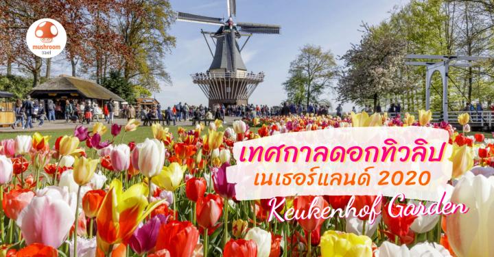 ชวนเที่ยว เทศกาลดอกทิวลิป เนเธอร์แลนด์ 2020 ณ สวนเคอเคนฮอฟ หนึ่งปีมีครั้ง!