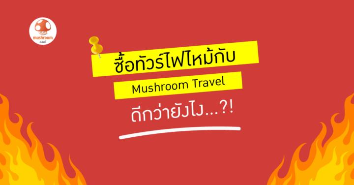 ซื้อ ทัวร์ไฟไหม้ Mushroom Travel ดีกว่ายังไง…?!