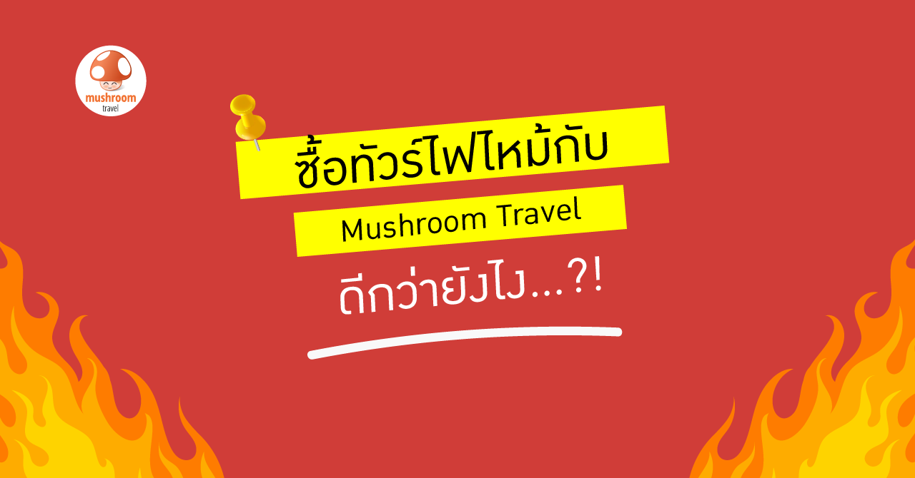 ทัวร์ไฟไหม้ Mushroom Travel