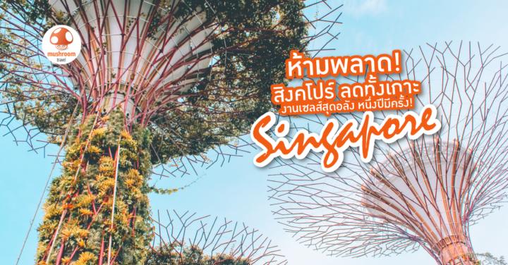 ห้ามพลาด! สิงคโปร์ ลดทั้งเกาะ 2019 งานเซลล์สุดอลัง 1 ปีมีครั้ง!