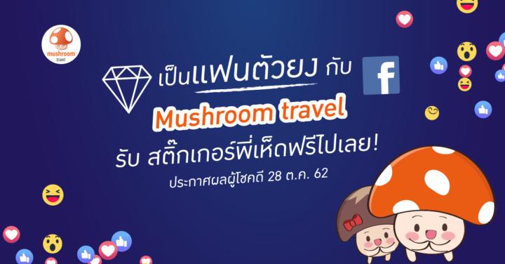"""ร่วมกิจกรรม """"แฟนตัวยง"""" ใน Facebook Mushroom Travel รับฟรี! สติ๊กเกอร์ไลน์พี่เห็ด !!"""