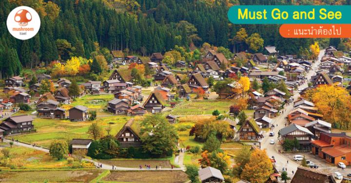พาเที่ยว ชิราคาวาโกะ ใบไม้เปลี่ยนสี ฤดูแห่งสีสันในหมู่บ้านมรดกโลก