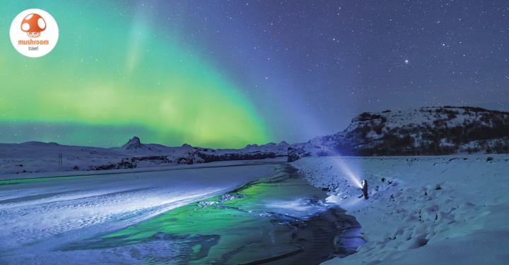 เดือน พฤศจิกายน เที่ยวประเทศไหนดี กับ 5 ทริปโดนๆ ต้นฤดูหนาว