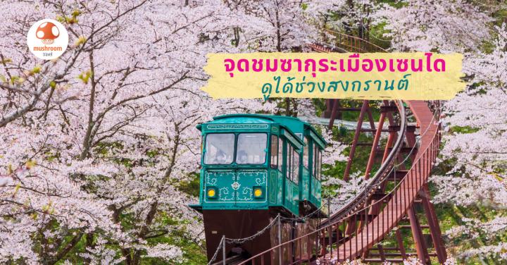 พิกัดเที่ยวญี่ปุ่น 7 จุดชม ซากุระ เซนได ดูได้ช่วงสงกรานต์ !!
