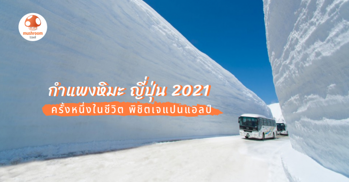 อัพเดต กำแพงหิมะ ญี่ปุ่น 2021 Tateyama-Kurobe Alpine Route ต้องไปสักครั้ง!!