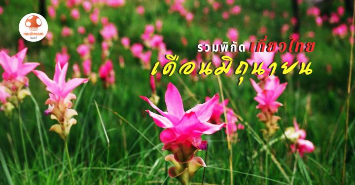 มิถุนายน เที่ยวไหนดี ? กับ 5 ที่เที่ยวเมืองไทย ไม่ไปไม่รู้